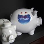 Piggy banks Catawba College students will use to collect money for the campaign. Submitted photo