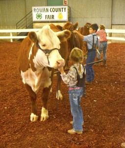 Cooperative Extension  Peewee showmanship with Sedona Sifford, Jake Sink and Erin Bigford.