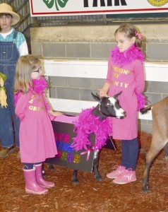 "Cooperative Extension Kaitlin and Grayce Moore in the Dairy Goat Dress-up Contest with their ""Save the Udders"" tribute."