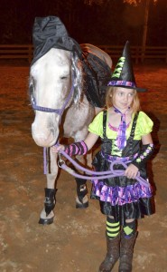 Submitted photo Skyler Christner and her horse Joe are dressed up for the costume class at the RACE 4-H Open Horse Show.