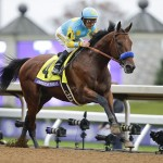 American Pharoah, with Victor Espinoza up, wins the Breeders' Cup Classic horse race at Keeneland race track Saturday, Oct. 31, 2015, in Lexington, Ky. AP Photo/Garry Jones