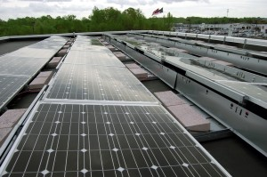 Solar panels line the roof of Gerry Wood Honda on Jake Alexander Boulevard.