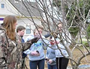 Cooperative Extension Horticulture Agent Danelle Cutting teaches a youth group how to prune fruit trees.