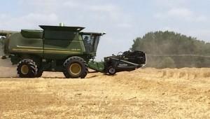 Cooperative Extension Farmer Brian Moore cutting wheat.