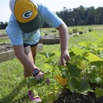 Kaylan Deal shows off a blooming squash plant in Millbridge Elementary's discovery garden. Rebecca Rider/Salisbury Post