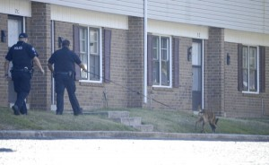 Salisbury Police are investigating a shooting at Zion Hills Apartment complex, located on Standish Street. Officers responded to a shots fired call Friday morning and found a male dead behind one of the units. Some neighbors said they heard shots while others heard nothing. Shavonne Walker/Salisbury Post