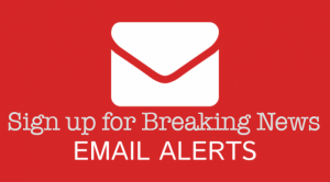 15-email-alert-services-672x372