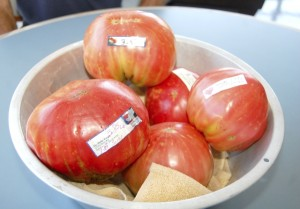 Deirdre Parker Smith/Salisbury Post A bowl full of Philip Wright's gigantic Abraham Lincoln tomatoes.