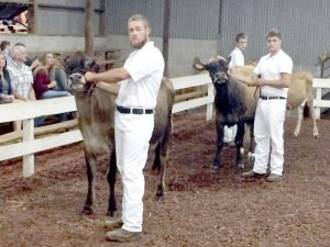 Cooperative Extension Jonathan Luther and Coby Kivet display their showmanship skills in the Supreme Showmanship division of the Dairy Show at the Rowan County Fair.